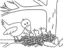 Small Picture Mother Bird Put Her Babies in Bird Nest Coloring Pages Best