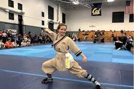 wushu chinese martial arts