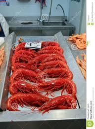 Carabineros Scarlet Shrimp For Sale At ...