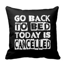 Pillow Quotes Cool Funny Today Is Cancelled Cushion Cover Novelty Quotes Decorative