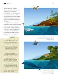 Ciencias naturales grado 6° generación primaria Ciencias Naturales Sexto Grado 2016 2017 Online Pagina 65 De 176 Libros De Texto Online