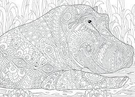 Coloring Pages Halloween Cat To Print Pokemon Hippopotamus Hippo 2