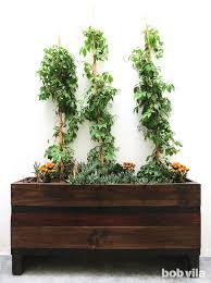 diy planter box main