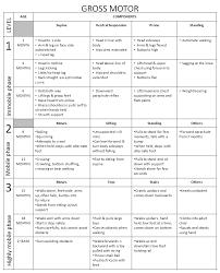 Developmental Milestones Chart Gross Motor Skills Development Chart Www Bedowntowndaytona Com