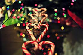 cute christmas tumblr photography. Modren Christmas Christmas Candy Canes For Cute Tumblr Photography M
