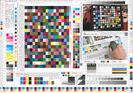 Colorsource Free Cmyk Test Print Forms In Color Page Pdf Wumingme