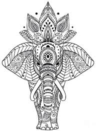 Animal Coloring Pages For Adults 29 Mandala 5 Futuramame