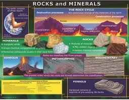 Wildlife Movement Chart Chart Rocks And Minerals Cd 5865