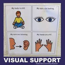 visual prompts for behavior