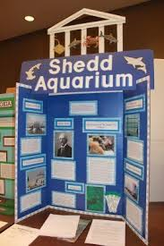 examples of poster board projects history fair display board examples so cool fair projects