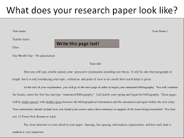 custom essay paper help parts the lodges of colorado springs do do annotated bibliography have titles