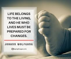 Life Changes Quotes Delectable 48 Life Changes Quotes That Inspire Acceptance SayingImages