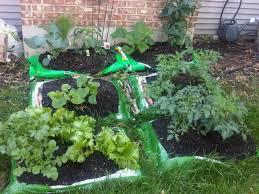 1 easiest beginner vegetable garden planted right in the bag