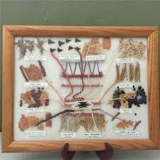 Navajo Dye Chart Navajo Framed Dye Chart Christine Lewis 29 99 Picclick