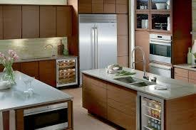 Kitchen Cabinets Refrigerator Kitchen Amusing Over Refrigerator Kitchen Cabinets With Double