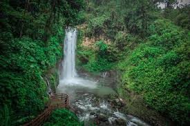 Image result for costa rica pictures