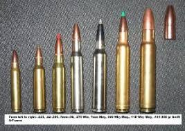Rigorous Bullets Caliber Chart Rifle Cartridge Sizes Calibre