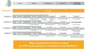Renal Dosing Chart Dosing Trajenta Linagliptin