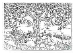 nature coloring books for s plus coloring pages for s nature fantastic coloring pages for colouring nature coloring books