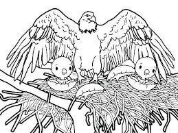Coloring Pages Of Eagles Coloring Page Color Pages Online Eagle