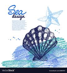 Seashell Design Seashell Background Sea Nautical Design Royalty Free Vector