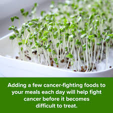 Eat To Defeat Cancer 7 Steps For Fighting Cancer Every Day