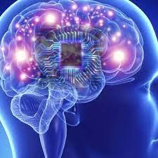 Innovador dispositivo conecta al cerebro con tecnologías basadas en silicio  | La Verdad Noticias