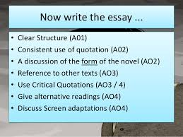 wuthering heights heathcliff  18 now write the essay