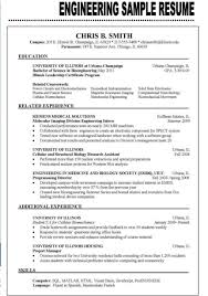 It Resume Examples 2016 Example Of The Best Resume Examples of Resumes 1