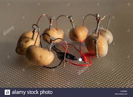 Potato Powered Light Bulb Project Alternative Energy Source Electrical Current Of Potato