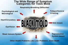 mold toxicity test. Exellent Test Symptoms Of Black Mold Exposure Toxic Test Removal  Health Effects Intended Toxicity C