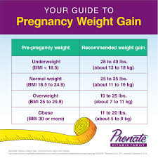 Pregnancy Weight Gain Chart 67 Described Baby Weight By Week Kg