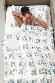 Aden  Anais Bed in a Bag