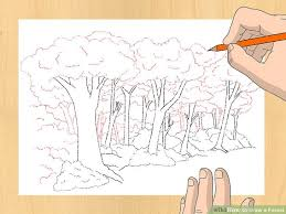 std 8 drawing book 3 ways to draw a forest wikihow of std 8 drawing book