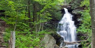 Places to stay near ricketts glen. Ricketts Glen State Park Attractions D L Delaware Lehigh
