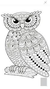 Owl coloring page … | Pinteres…