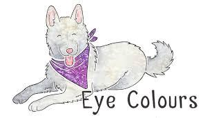 Staffy Colour Chart Dog Coat Colour Genetics