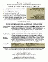 Business Intelligence Manager Resume Example Pictures Hd