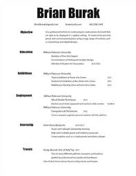 Resume 3d Designer. sample art resume resume cv cover letter. top ...