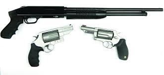 410 Bore Ammo Tests Gun Tests Article