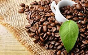 Alternatively, buy samples if you choose. The Key To Successful Wholesale Coffee With Java Times Caffe Java Times Caffe