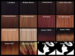 Chestnut Color Hair Color Chart Find Your Perfect Hair Style