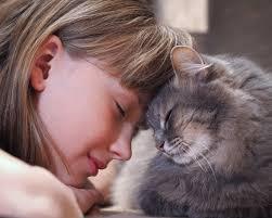 cat human bond