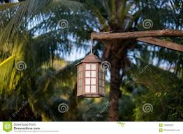 garden outdoor lighting. Lamp For Outdoor Lighting Hanging On Tree In The Garden Stock Image Excellent Lanterns Pictures Ideas Lantern