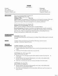 internet computer essay joystick