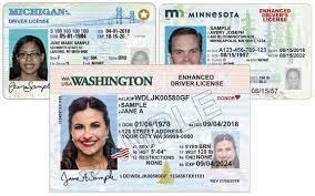 license for international travel