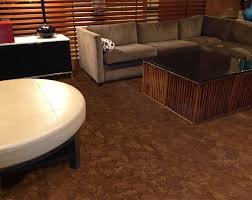Cork Floor In Kitchen Pros And Cons Is Cork Flooring Good For Bathrooms