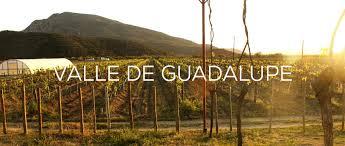 Resultado de imagen para valle de guadalupe images