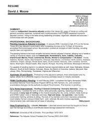 Auto resume writer