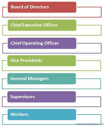 Executive Hierarchy Chart Corporate Management Hierarchy Business Management